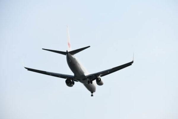 定番の航空会社提携カードはANAより「JAL」の方が選びやすいか